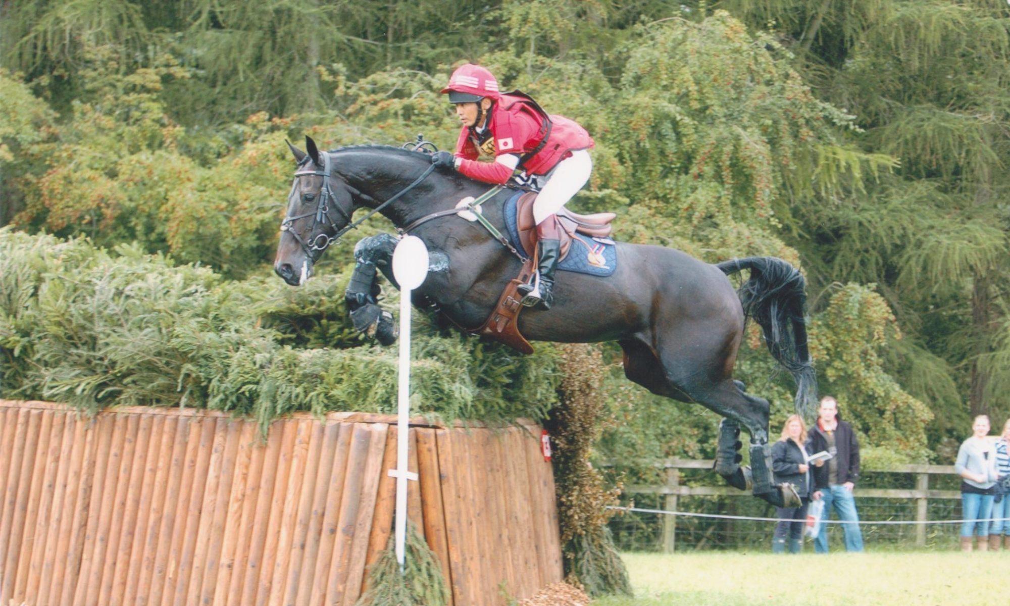NTT Equestrian services